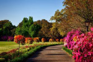 flower landscape pensacola fl